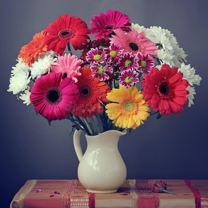 与德兰士瓦雏菊花束的静物画在一个白色水罐的 免版税库存图片
