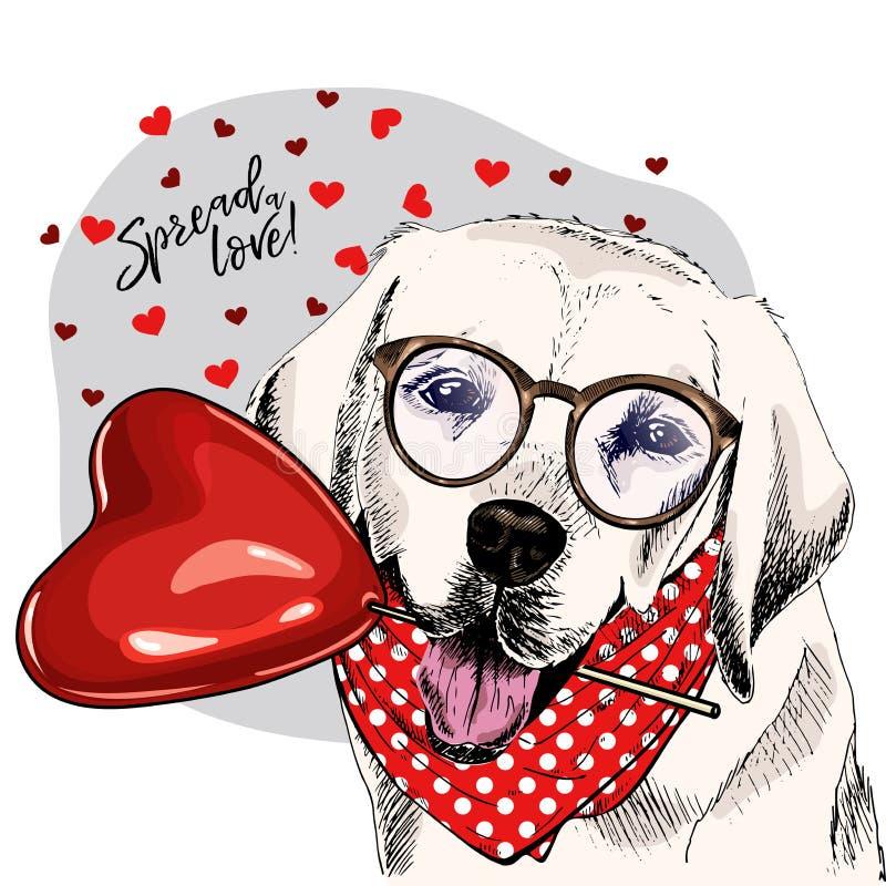 与心脏形状baloon的手拉的拉布拉多猎犬 传染媒介情人节贺卡 逗人喜爱的五颜六色的狗佩带 库存例证
