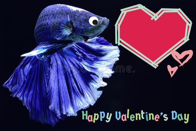 与心脏的情人节卡片在betta鱼背景 库存图片