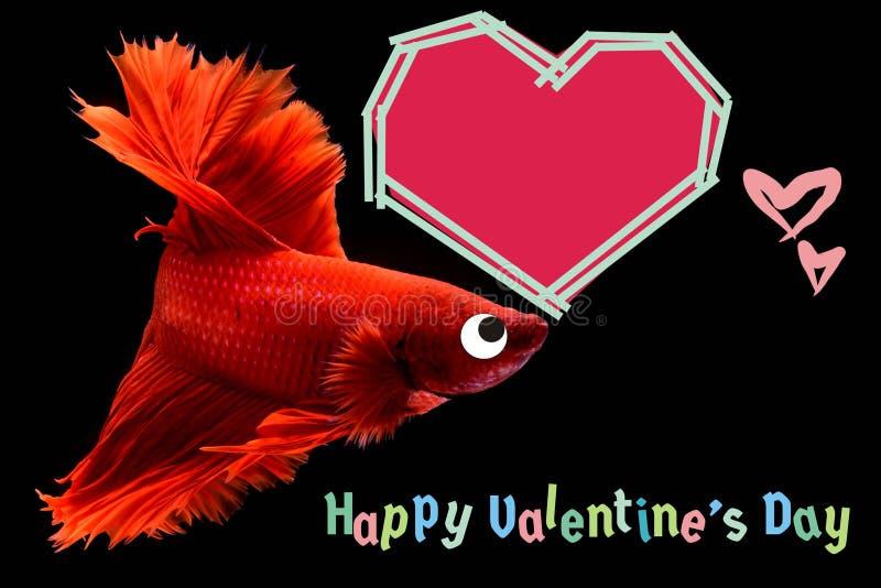 与心脏的情人节卡片在betta鱼背景 免版税图库摄影