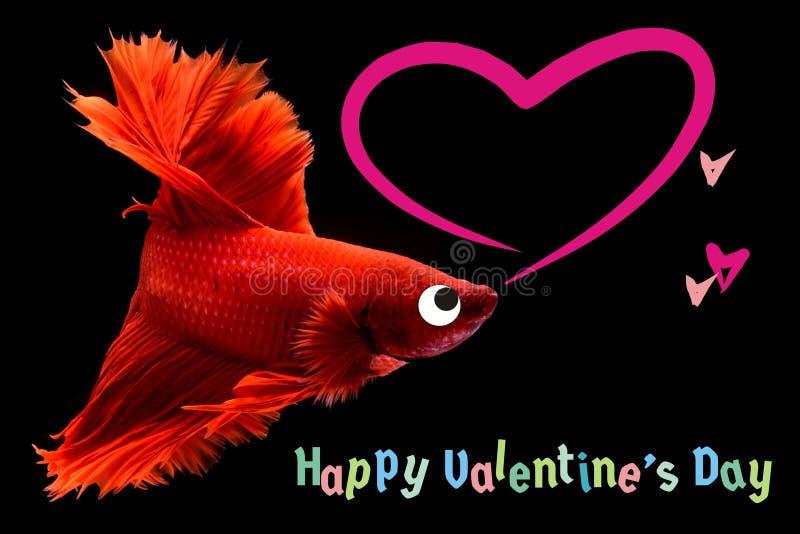 与心脏的情人节卡片在betta鱼背景 免版税库存图片