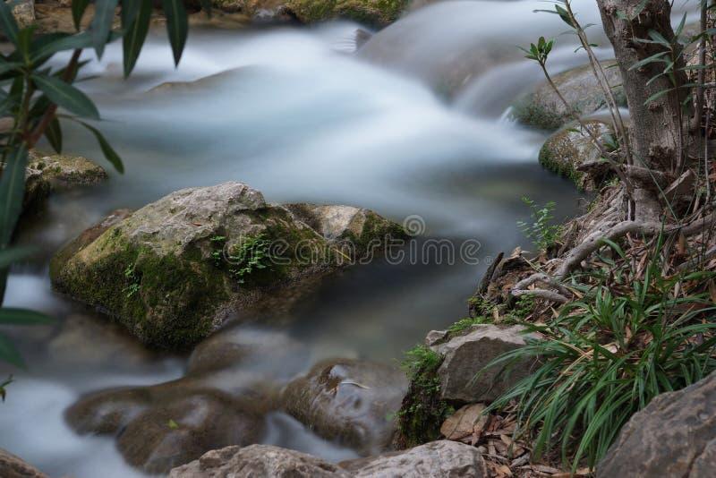 与急流的一条小当前小河和与推出从水的青苔的一块石头 库存图片