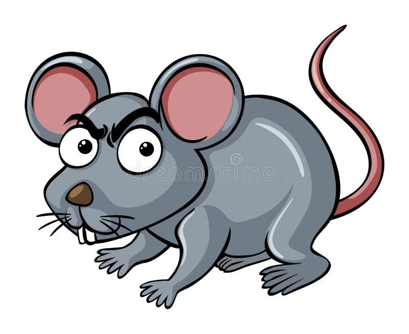 72年12月初9鼠人2018运势 2018年属鼠的全年运势