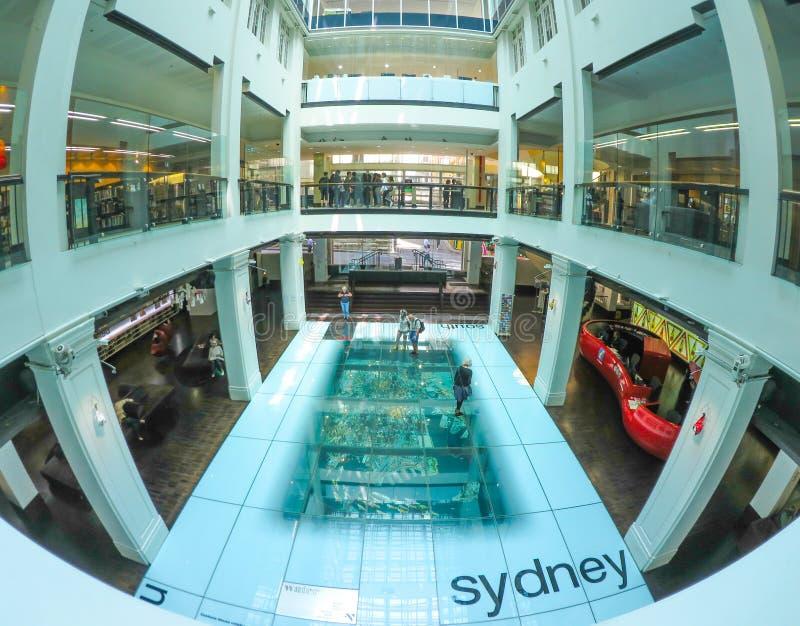 与悉尼在下CBD的比例模型的透明入口地板在江海关大厦,环形码头 库存照片