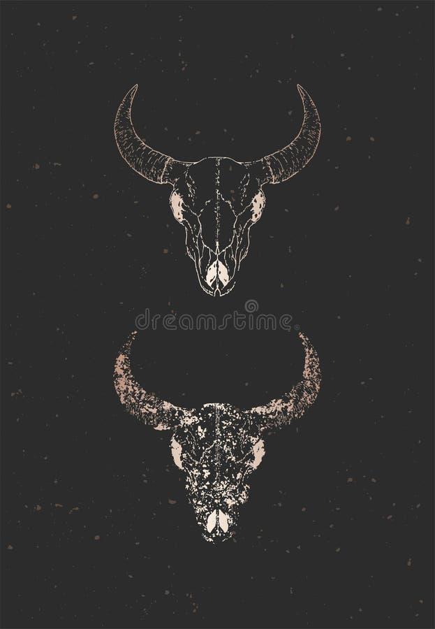 与手拉的公牛头骨两个变形的传染媒介例证在黑背景的 金子剪影和等高与难看的东西 皇族释放例证
