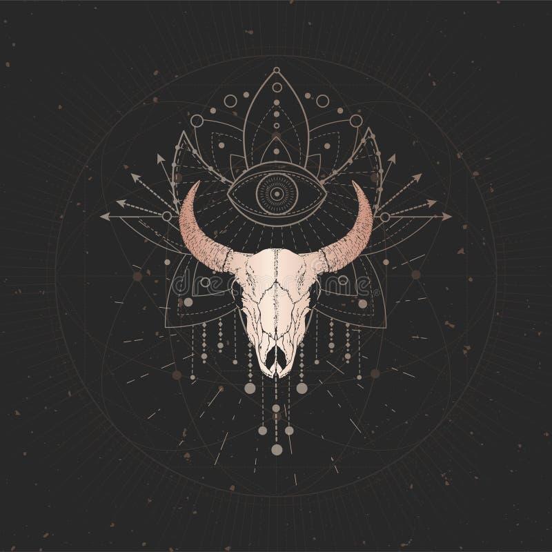 与手拉的公牛头骨的传染媒介例证和在黑葡萄酒背景的神圣的几何标志 r 库存例证