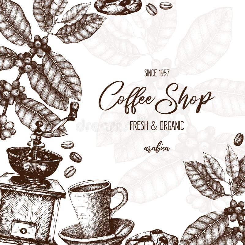与手拉的咖啡植物剪影的传染媒介设计 阿拉伯咖啡的植物的例证用果子 葡萄酒咖啡包装的templat 皇族释放例证