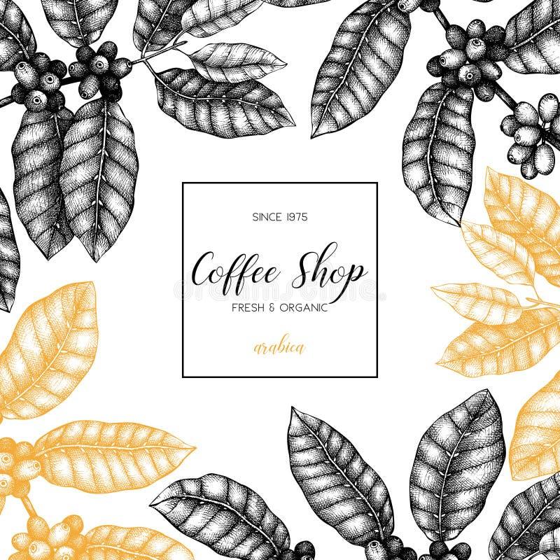 与手拉的咖啡植物剪影的传染媒介设计 阿拉伯咖啡的植物的例证用果子 葡萄酒咖啡包装的templat 库存例证