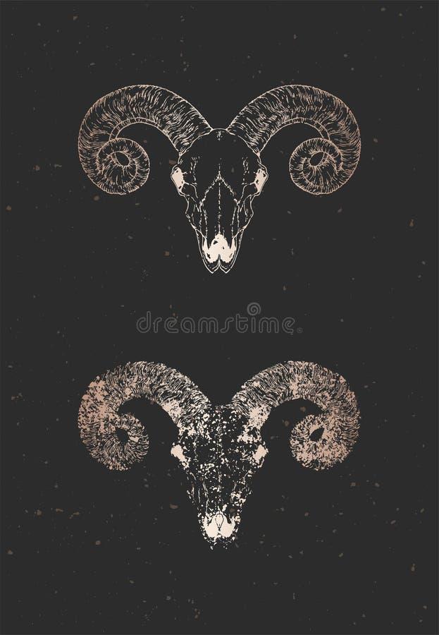 与手拉的狂放的公羊头骨两个变形的传染媒介例证在黑背景的 金子剪影和等高与难看的东西 库存例证