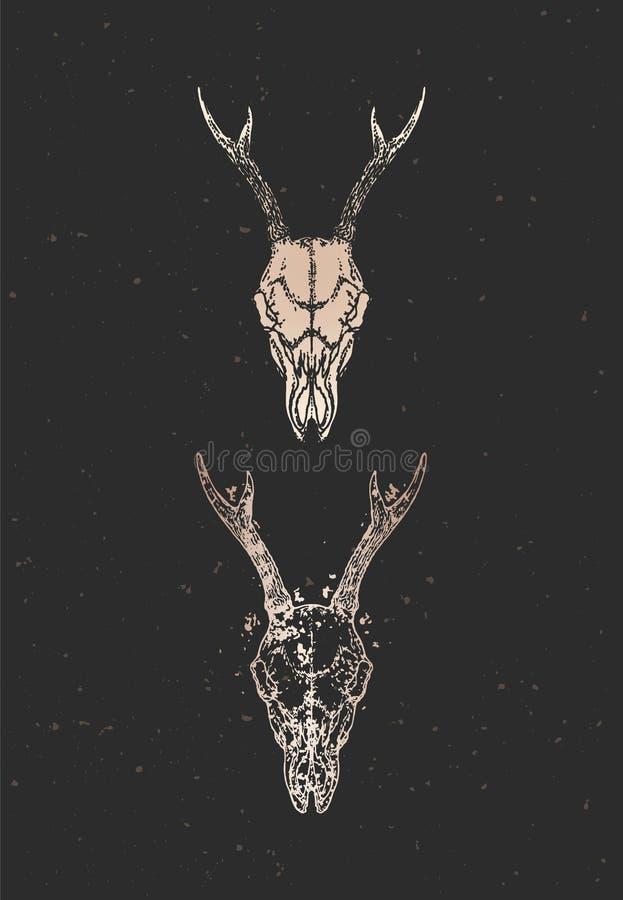 与手拉的狍头骨两个变形的传染媒介例证在黑背景的 金子剪影和等高与难看的东西 库存例证