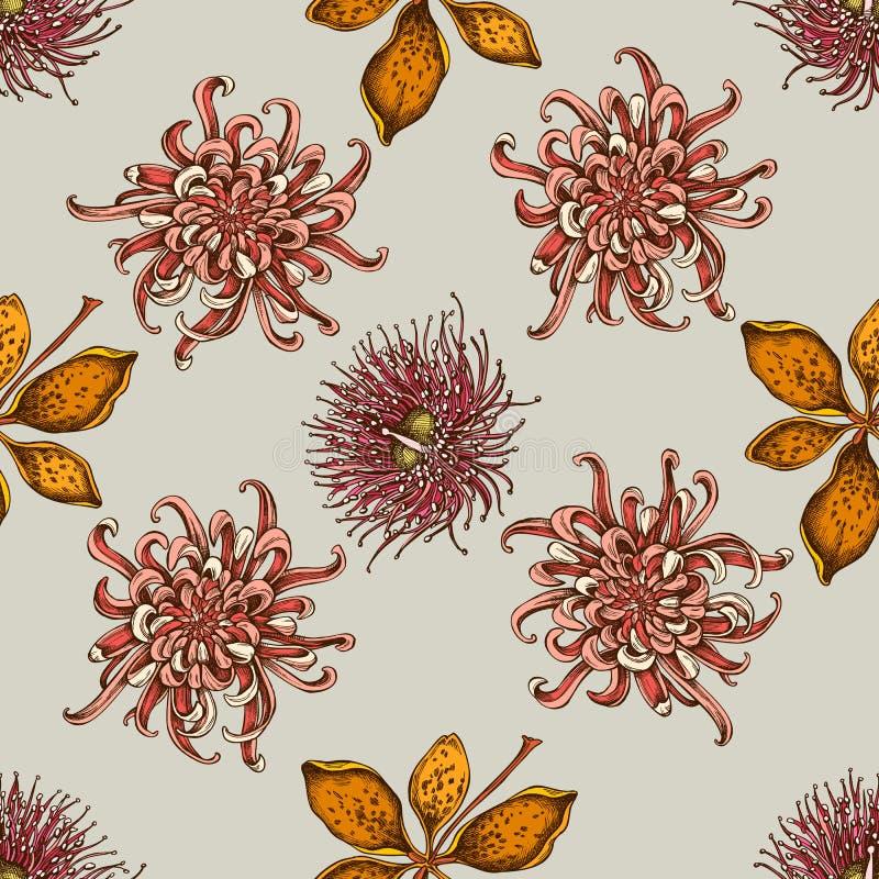 与手拉的色的日本菊花,黑莓百合,玉树花的无缝的样式 皇族释放例证