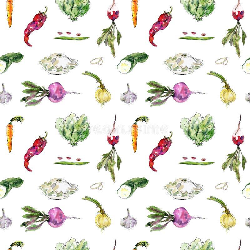 与手拉的菜的无缝的水彩样式 甜菜根,萝卜,红萝卜,豆,豌豆,荚,朝鲜蓟,辣椒 免版税库存照片