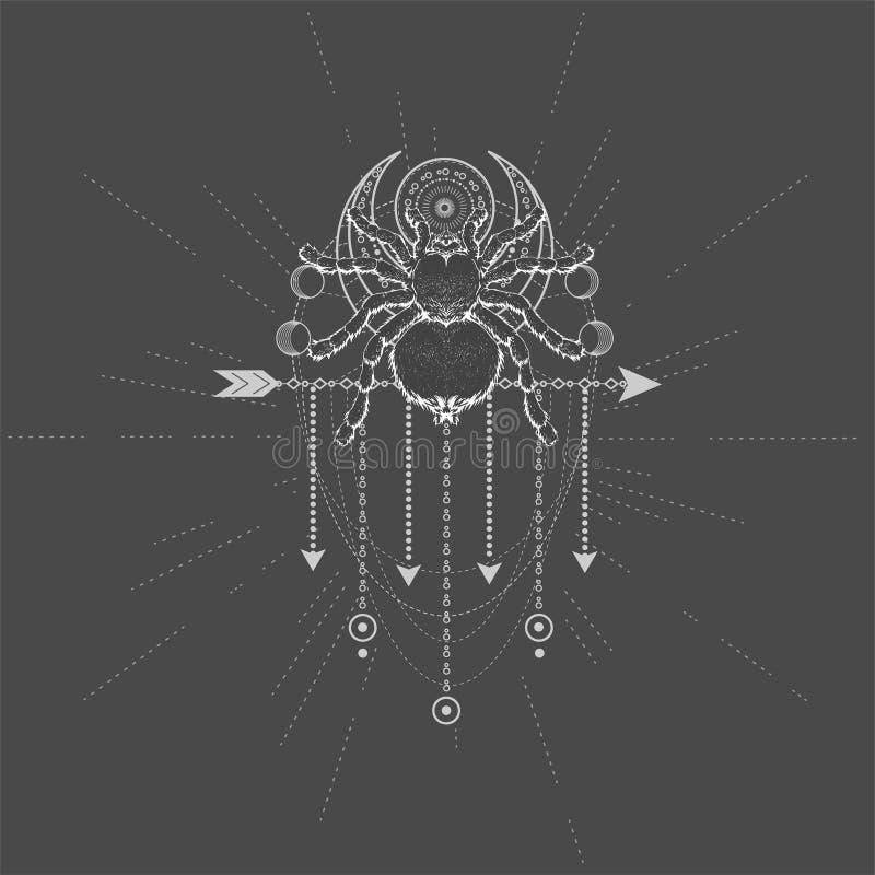 与手拉的蜘蛛塔兰图拉毒蛛的传染媒介例证和在黑背景的神圣的标志 抽象神秘的标志 库存例证