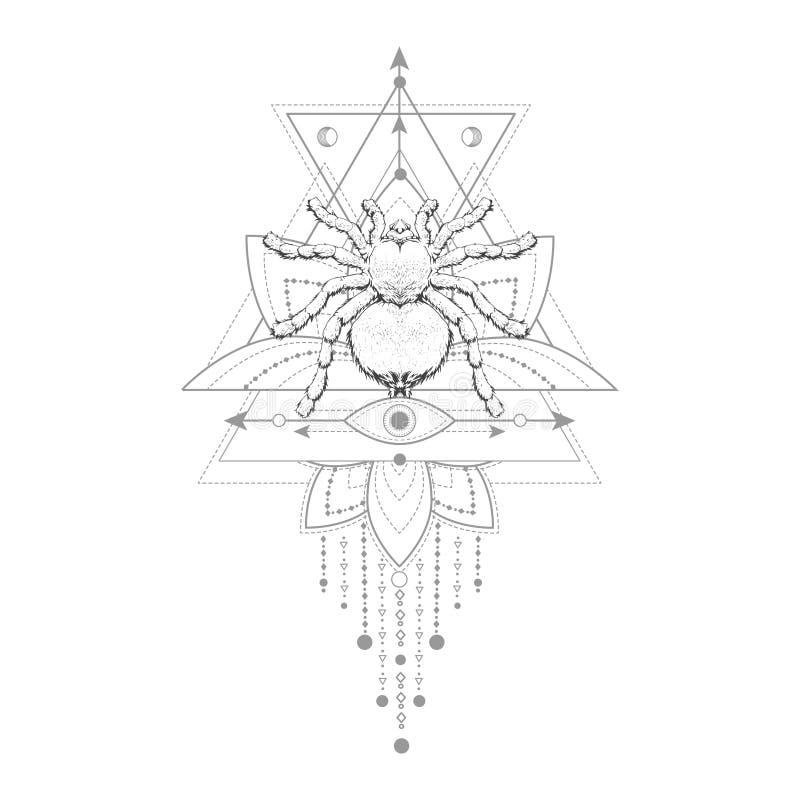 与手拉的蜘蛛的传染媒介例证和在白色背景的神圣的几何标志 抽象神秘的标志 向量例证