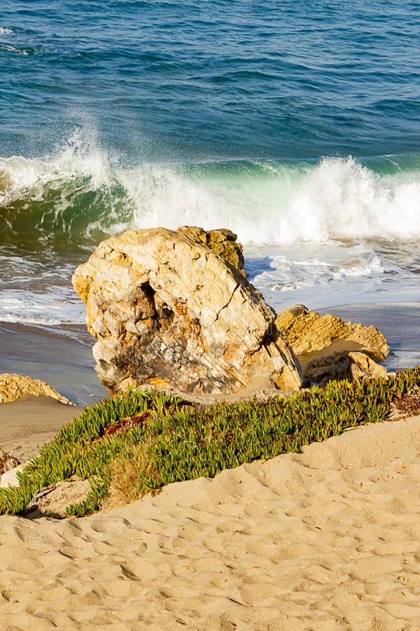 与打破在含沙海岸线的回流泡沫的Backspray顶饰的波浪 免版税库存图片