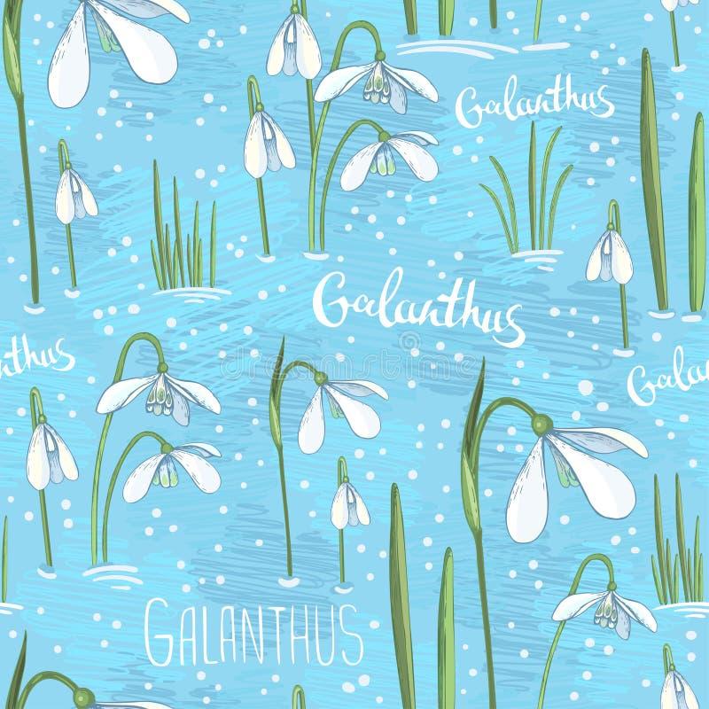 与报春花的春天无缝的背景 在蓝色背景的白色手拉的花 与snowdrops的背景为 库存例证