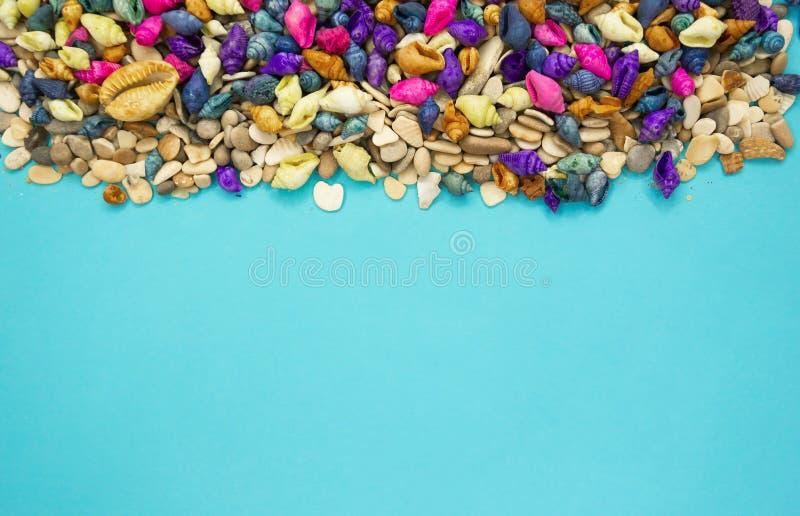 与拷贝空间的五颜六色的贝壳背景 免版税图库摄影