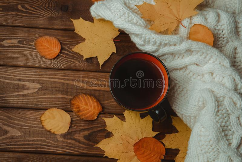 与拷贝空间的秋天背景设计的 茶杯顶视图或杯子,下落的红色和黄色叶子和毛线衣在木桌上 库存照片