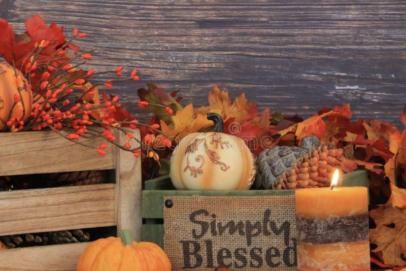 与拷贝空间的秋天装饰 库存照片