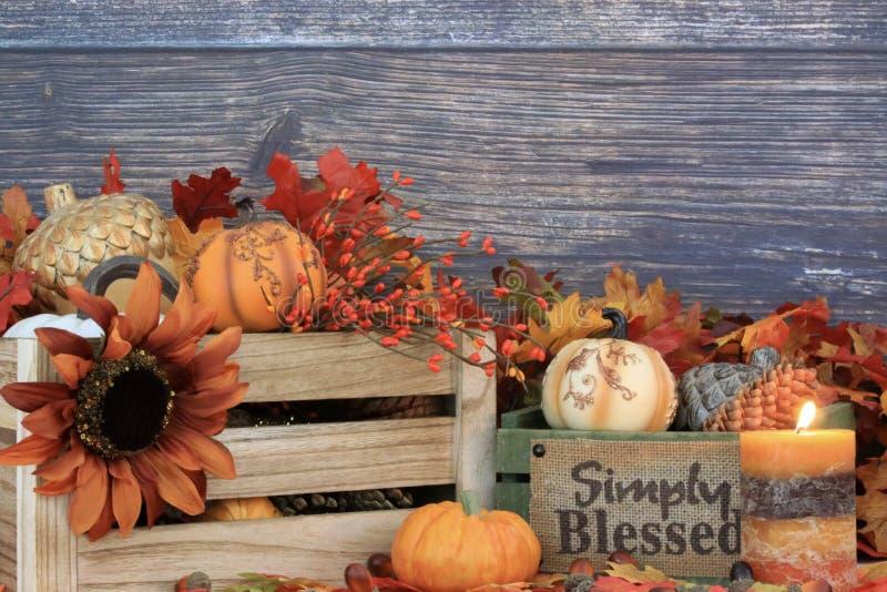 与拷贝空间的秋天装饰 库存图片