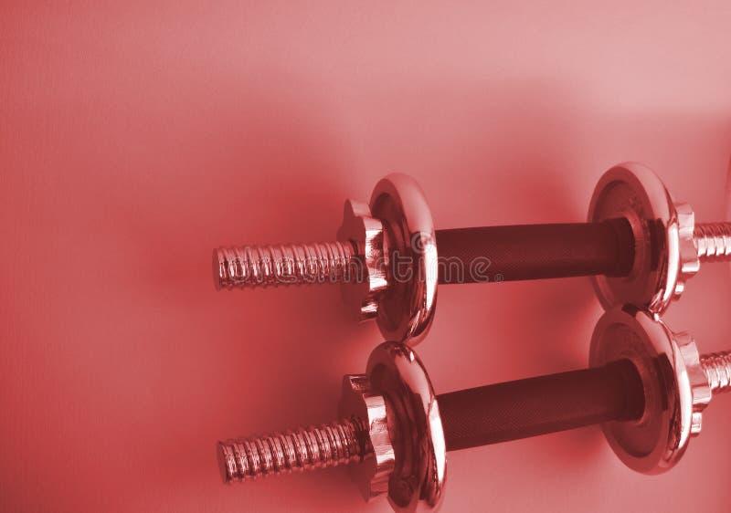 与拷贝空间的钢2个桃红色哑铃 建身的运动器材 健身,体育概念 免版税库存照片