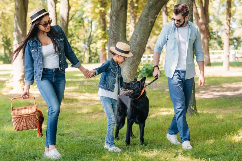 与握手和走在晴朗的森林里的狗的愉快的人种间家庭 免版税库存照片