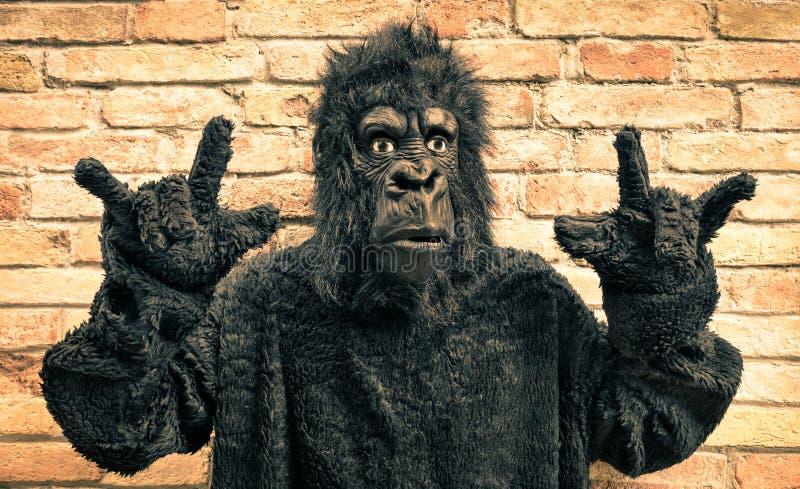 与摇滚乐手势的滑稽的假大猩猩 库存照片