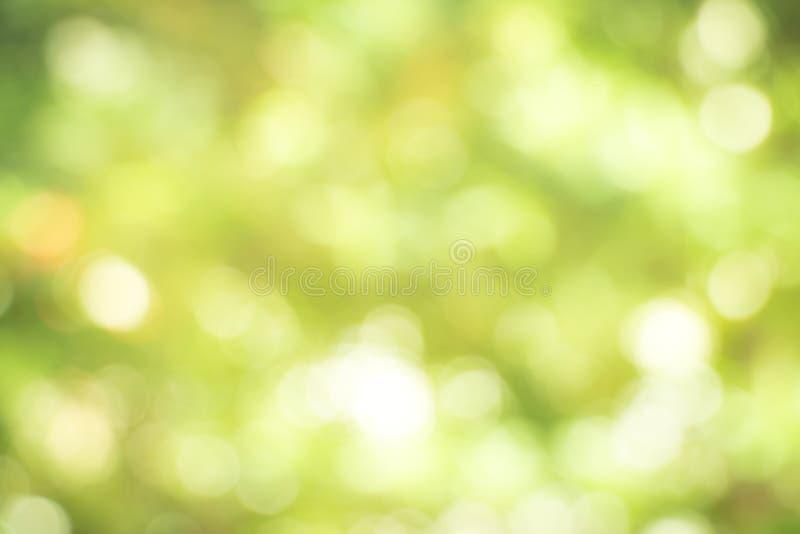 与摘要的新健康绿色生物背景弄脏了叶子 免版税库存图片