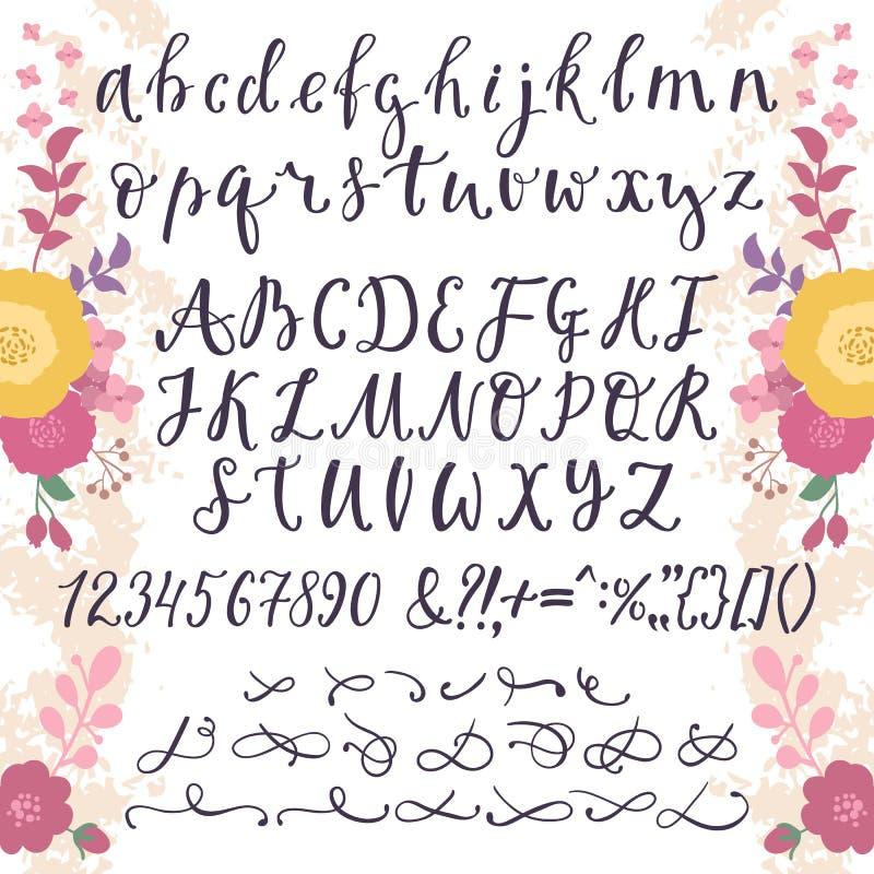 """与数字""""&""""号的书法向量字体和标志开花手拉的字母表字法 库存例证"""