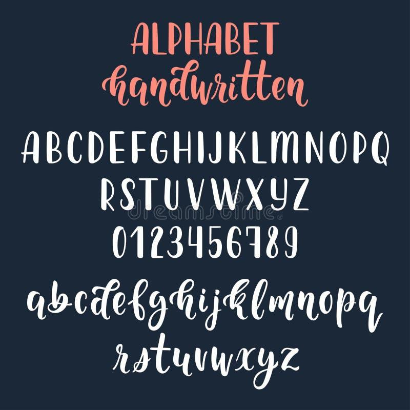 与数字和标志的白色手写的拉丁书法刷子剧本 书法字母表 向量 皇族释放例证