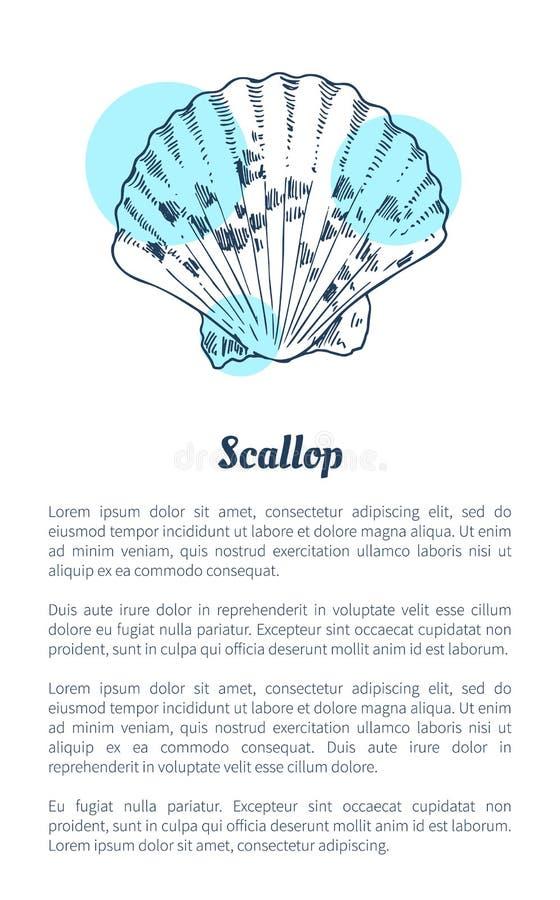 与文本样品的扇贝海洋生物海报 皇族释放例证