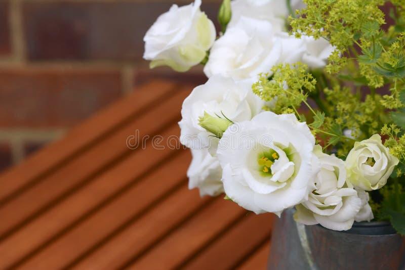 与斗篷草的白色郁金香植物在一张木桌上 库存照片