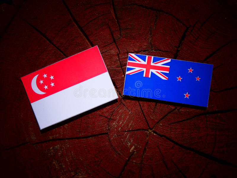 与新西兰旗子的新加坡旗子在被隔绝的树桩 库存照片