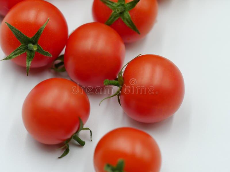 与新鲜的绿色藤的新鲜的西红柿 库存图片