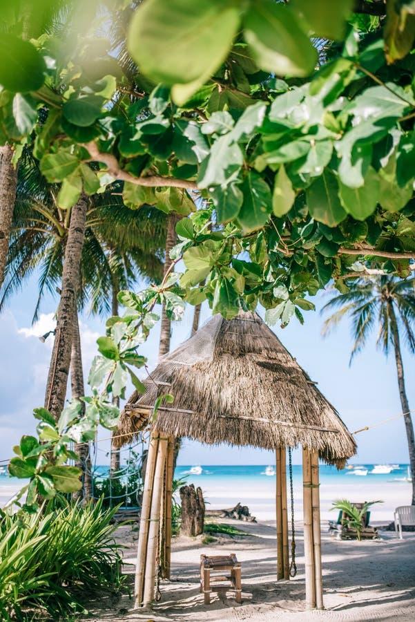 与新鲜的绿色棕榈树的竹小屋在站立在白色沙子海滩附近 温泉概念 免版税库存图片