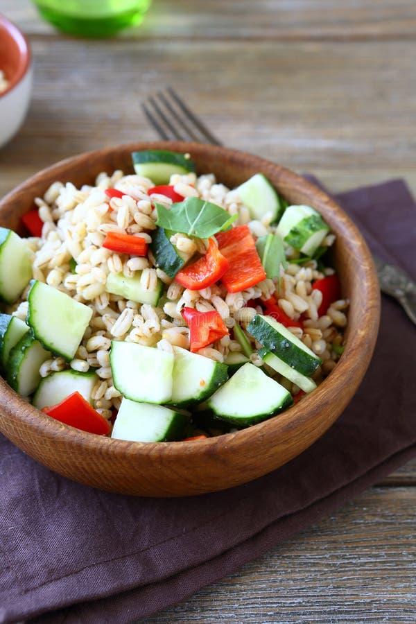 与新鲜蔬菜的大麦米沙拉 免版税库存图片