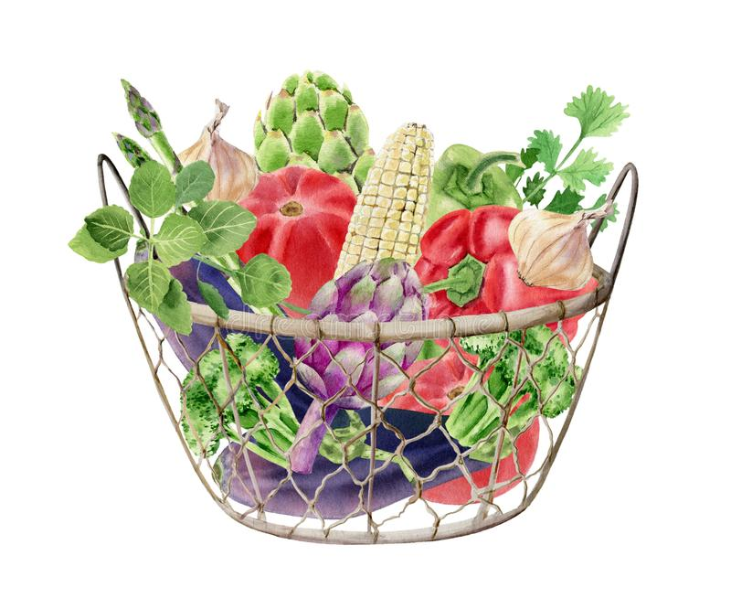 与新鲜蔬菜的手画水彩clipart在箱子 库存例证