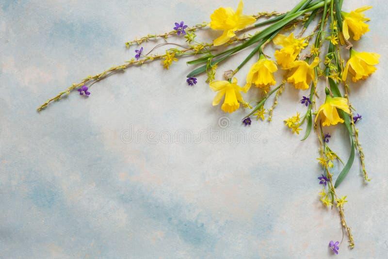 与新黄水仙、报春花和杨柳分支的春天花束在天空蔚蓝背景 库存照片
