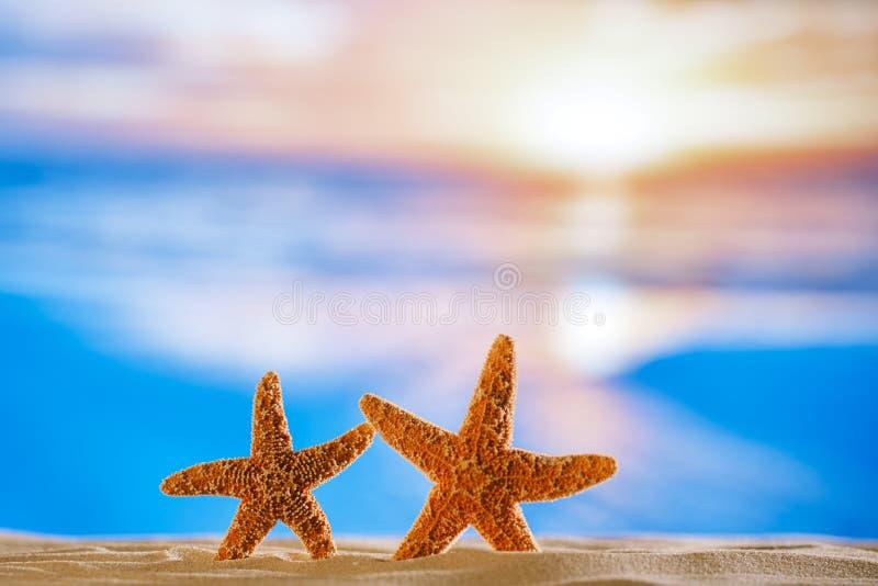 与日出海洋、海滩和海景的海星 免版税库存图片