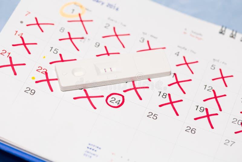 与日历的正面妊娠试验 免版税库存图片