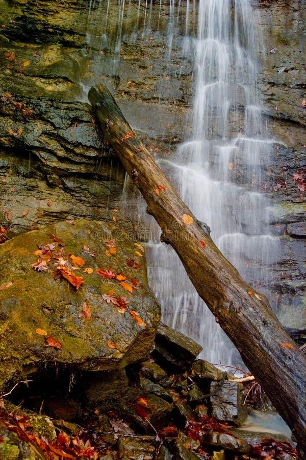 与日志的阿肯色瀑布 免版税库存照片