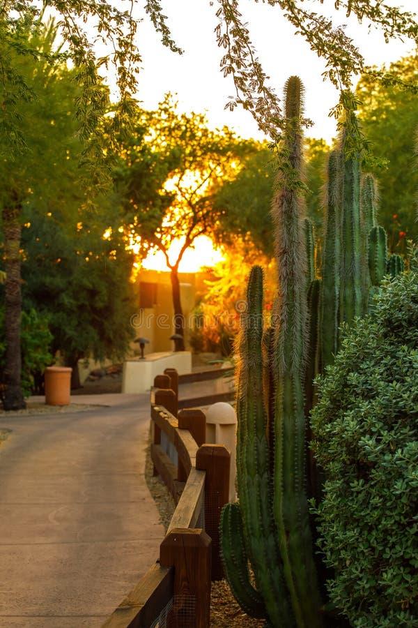 与日落的亚利桑那手段 免版税库存照片