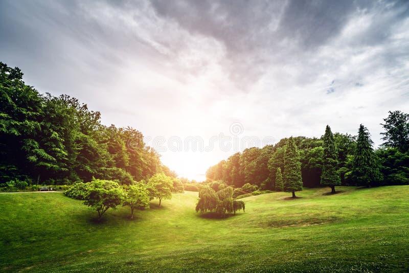 与日落的风景在公园 库存照片