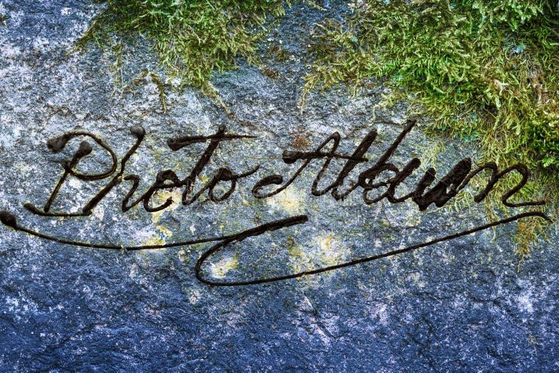与旱田的绿色青苔 免版税图库摄影