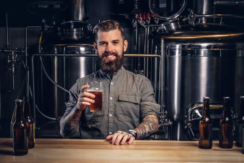 与时髦的胡子和头发的被刺字的男性在制片者啤酒厂拿着工艺啤酒坐在酒吧柜台的品脱 库存图片