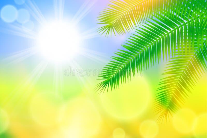 与明亮的太阳和棕榈叶的背景 库存例证
