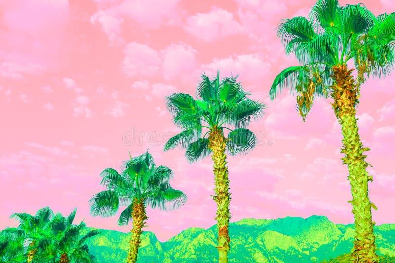 与明亮的棕榈和多云桃红色珊瑚天空的超现实的风景 免版税库存照片