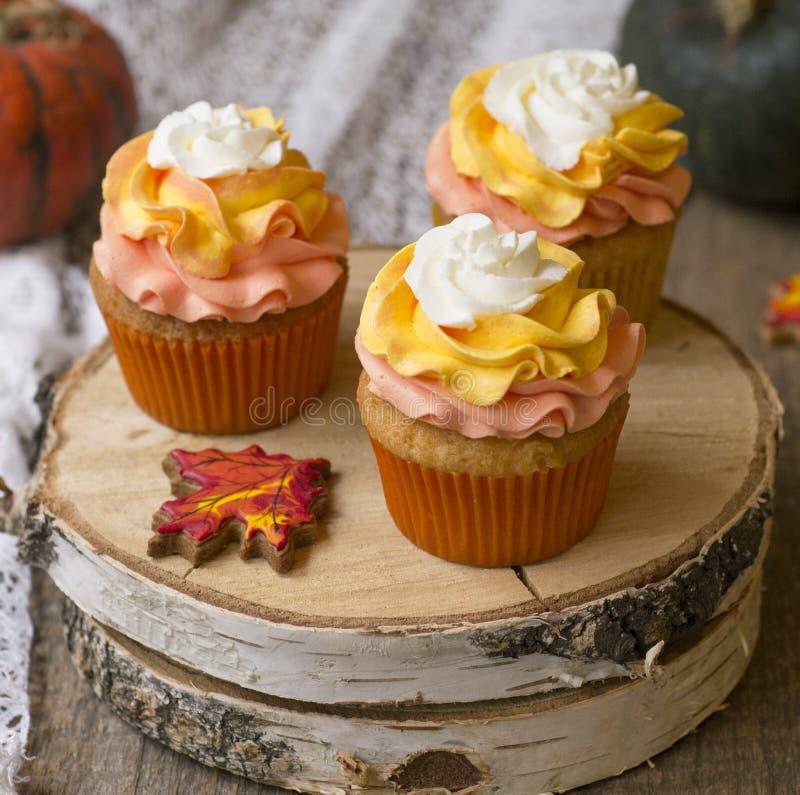 与明亮的橙色盖帽的南瓜杯形蛋糕 库存图片