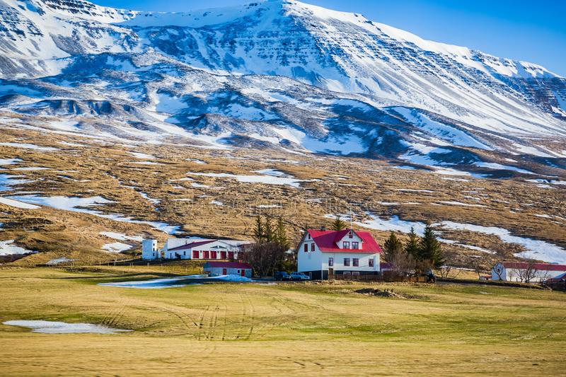 与明亮的红色屋顶的白色农舍在Myvatn附近在冰岛 图库摄影