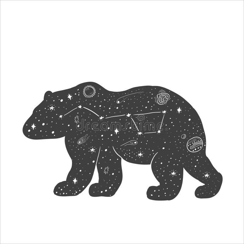 与星和星座的熊剪影 库存例证